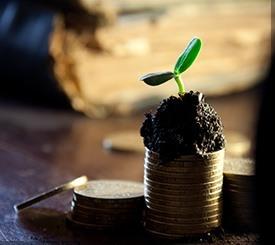 Investir et défiscaliser